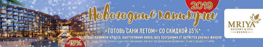 Новогодние каникулы 2019